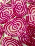 甜菜颜色样式 库存照片