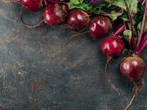 甜菜,在黑暗的背景,拷贝空间的甜菜根束 库存照片