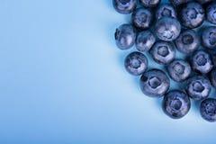 甜蓝莓一张顶视图在明亮的蓝色背景的 成熟和未加工的莓果特写镜头  夏天饮食的鲜美蓝莓 免版税库存图片
