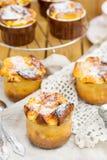 甜酸奶干酪蛋白牛奶酥用点心的葡萄干 免版税库存图片