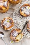 甜酸奶干酪蛋白牛奶酥用点心的葡萄干 库存照片