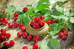 甜雪利酒-有机莓果,刷新和水多的果子 库存图片