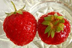甜stawberris夫妇  库存照片