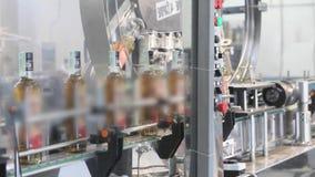 生产和装瓶的生产线酒精饮料 酒客的生产的工厂 股票录像