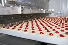 生产曲奇饼在工厂 免版税图库摄影