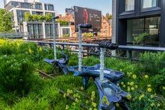生产线上限公园在曼哈顿纽约 都市公园由在高的火车轨道和游人是普遍的修造的本机 库存照片