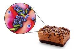 生产食物环节中的传染,医疗概念 免版税库存照片