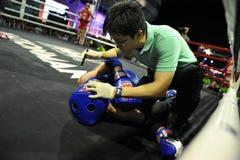 非职业Muaythai世界冠军 免版税库存照片