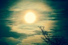 生动的日落日出 库存图片