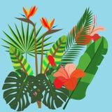 生动的束不同的热带花和植物 免版税库存照片