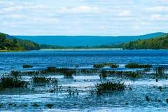 生动的湖 库存图片