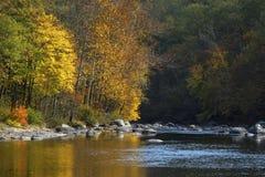 生动的秋叶在法明顿河,小行政区,骗局反射 库存图片
