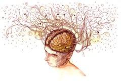 生动的脑子 库存图片