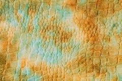 生动背景特写镜头被编织的围巾的纺织品 免版税图库摄影