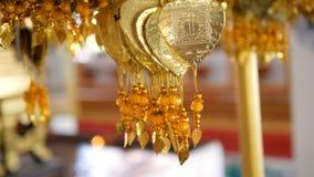 生叶吊隐喻好运保佑佛教徒的金黄bo 影视素材