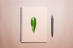 生叶在笔记本和笔在一张包装纸 在视图之上 库存图片