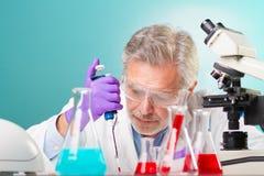 生命科学研究。 库存照片