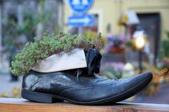 生存鞋子 库存照片