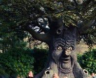 生存结构树 库存图片