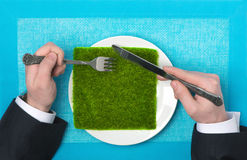 生态产品 免版税库存图片