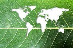 生态和认为绿色概念在新鲜的绿色叶子的世界地图 库存照片