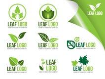 生态商标标志的汇集,有机绿色叶子传染媒介设计 图库摄影