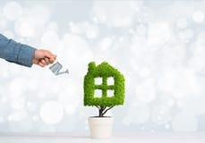 生态回收和有植物的eco建筑的概念罐的 图库摄影