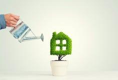 生态回收和有植物的eco建筑的概念罐的 免版税库存照片