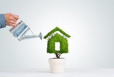 生态回收和有植物的eco建筑的概念罐的 库存图片