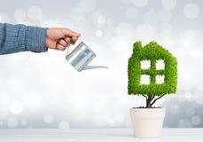 生态回收和有植物的eco建筑的概念罐的 库存照片
