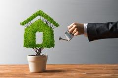 生态回收和有植物的eco建筑的概念罐的 免版税库存图片