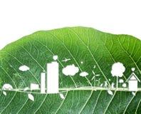 生态在新绿色叶子背景的构思设计 免版税图库摄影