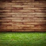 生态墙壁 免版税库存照片