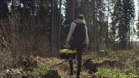 生态学家审查一个树桩 影视素材