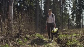 生态学家审查伤害树干 影视素材
