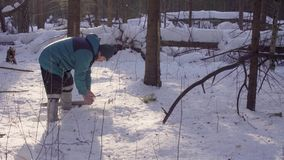 生态学家采取雪样品  股票录像