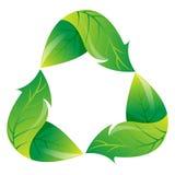 生态学是绿色回收 图库摄影