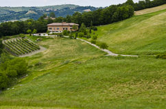 生态旅游-农舍、葡萄园和领域 免版税库存照片