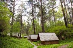 生态旅馆客舱在森林 库存照片
