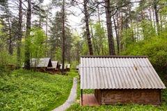 生态旅馆客舱在森林 免版税库存照片