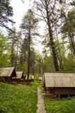 生态旅馆客舱在森林 免版税库存图片