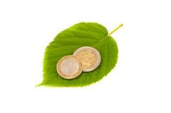 生态是在绿色叶子的未来金钱二枚欧洲硬币 免版税库存图片