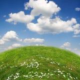 生态横向 免版税库存照片