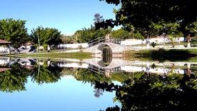生态的公园 库存照片