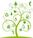 生态结构树 免版税库存照片