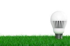 生态能量救球概念 在草的被带领的电灯泡 3d翻译 免版税库存图片