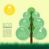 生态,与树的构思设计Infographic  免版税库存图片