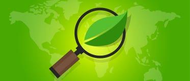 生态eco友好的世界地图绿色叶子标志环境 免版税图库摄影
