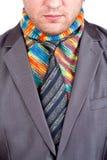 生意人五颜六色的灰色围巾诉讼 库存图片