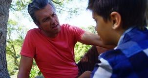 生慰问他的儿子在野餐在公园4k 股票视频